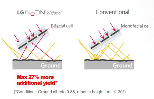 LG NeON 2 Bifacial solar panels